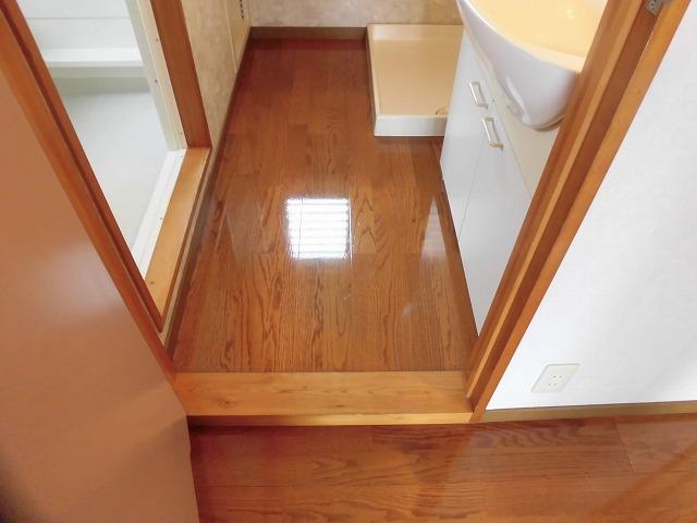 洗面入り口(開き戸)